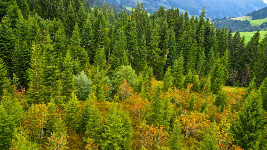 UNESCO-Biosphärenreservat Entlebuch